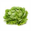 Hel salat