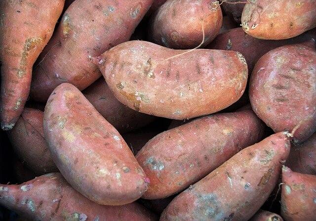 Søde kartofler 6 kg ØKO ES